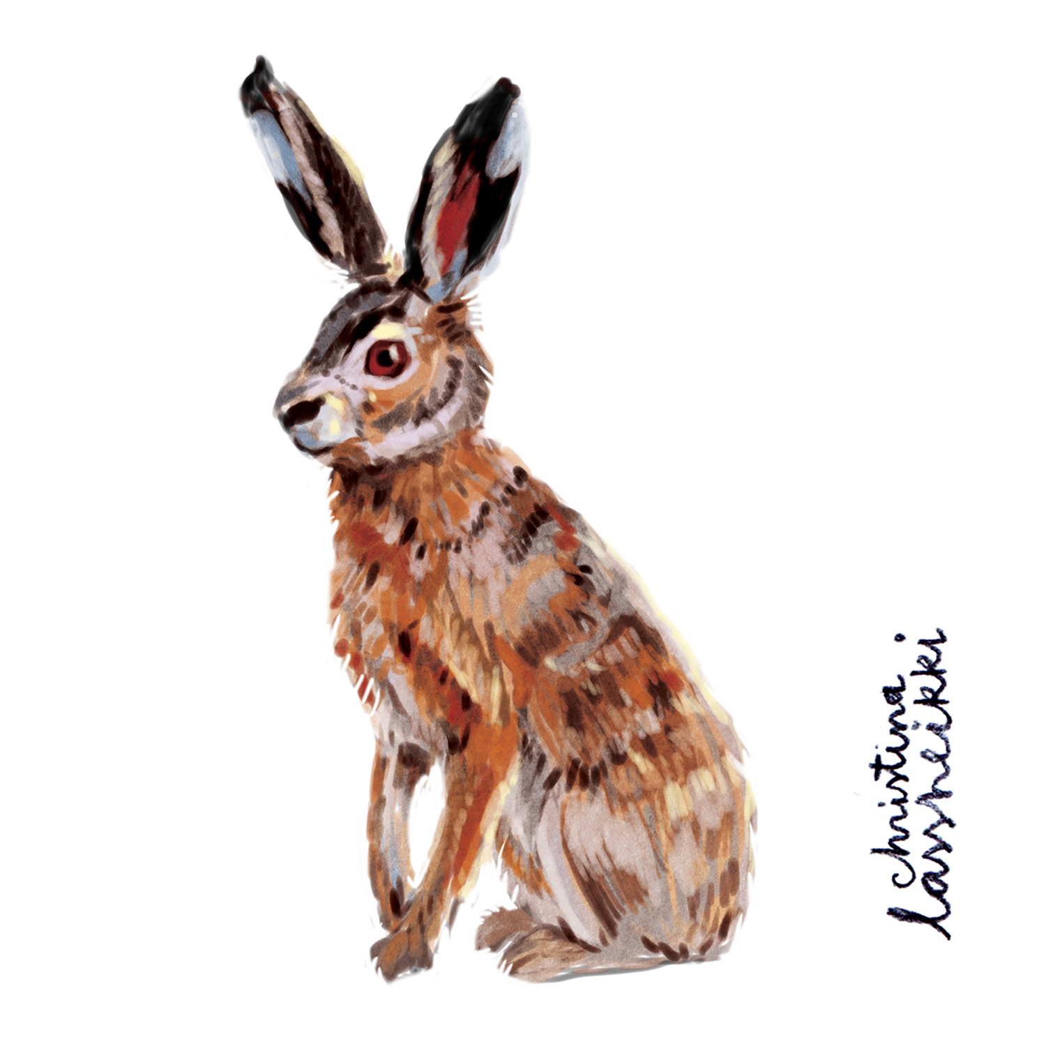 hare_digital